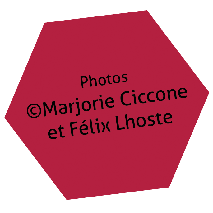 Photos Marjorie Ciccone